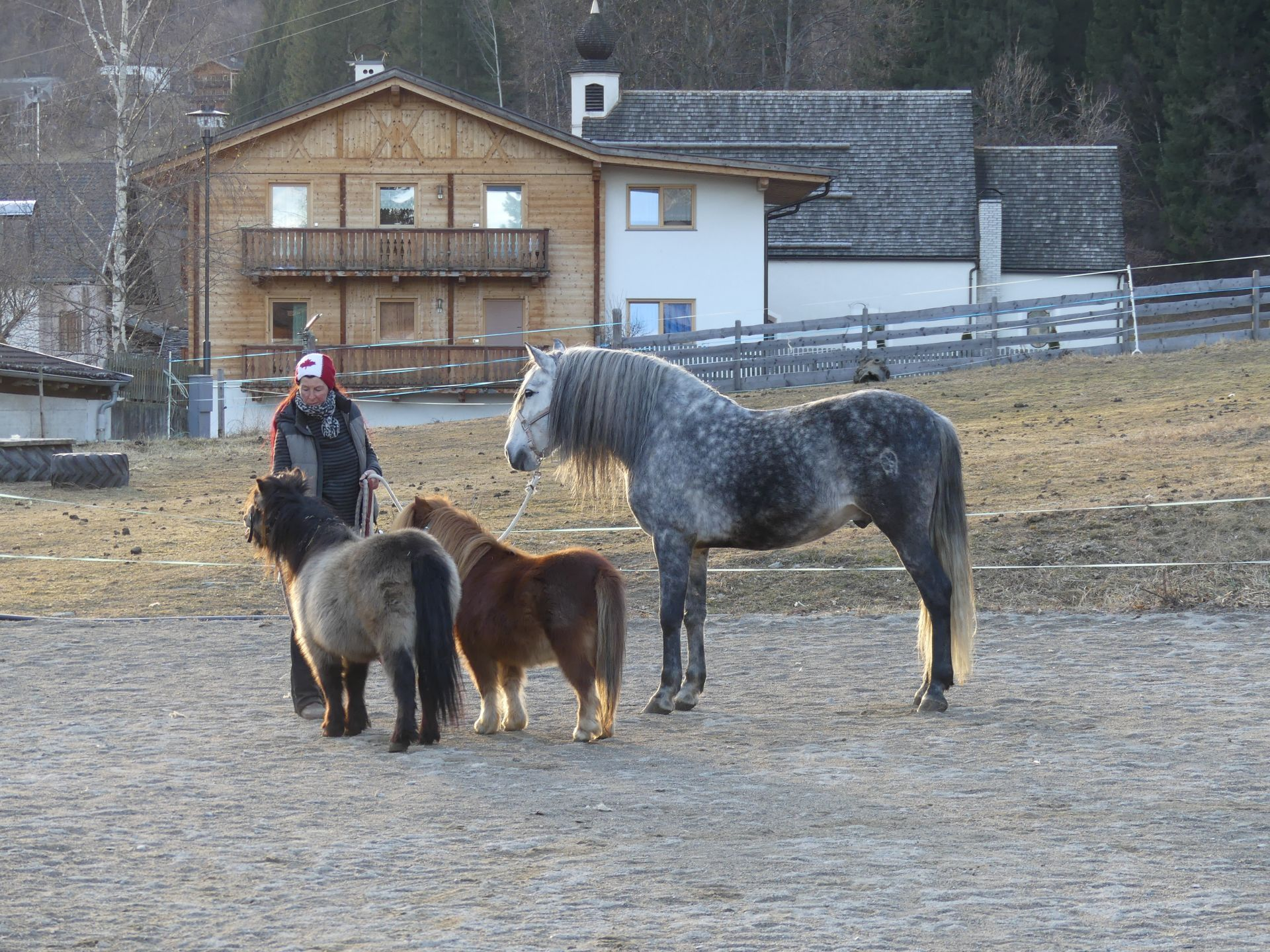 Theistadl hotel appartements cavalcare - Avere un cavallo ...